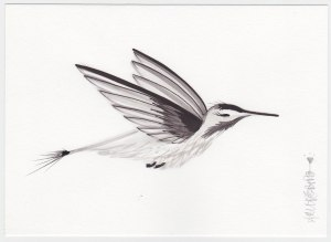 While there is still much hesitation in this little Sumi painting, I feel I am moving in the right direction.