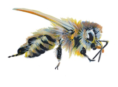 Honey Bees are often Mis-Represented in Arthttps://www.kickstarter.com/projects/ryanfalenlee/rivendell-apiaries