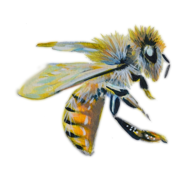 Honey Bees tend to be very sweet, furry, honey colored, and they are disappearing in masses in recent years. https://www.kickstarter.com/projects/ryanfalenlee/rivendell-apiaries